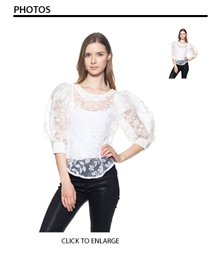 Rebecca Sheer Lace Puffy Sleeve Top in White