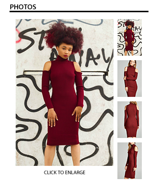 Long Sleeve Turtleneck Ribbed Bodycon Dress in Wine